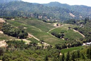 Jericho Canyon (and Winery)